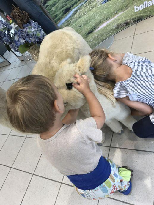 Alpakaliebe beim Einkaufen - 12 von 12 im August