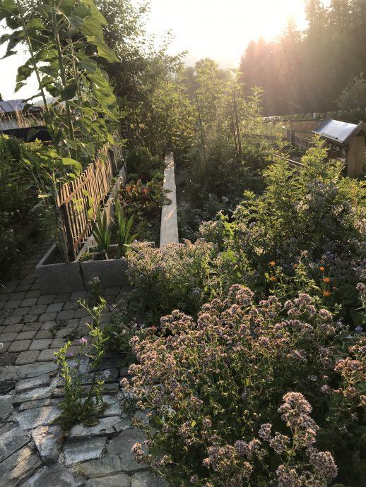 Sonnenaufgang im Garten bei Hausnummersechs
